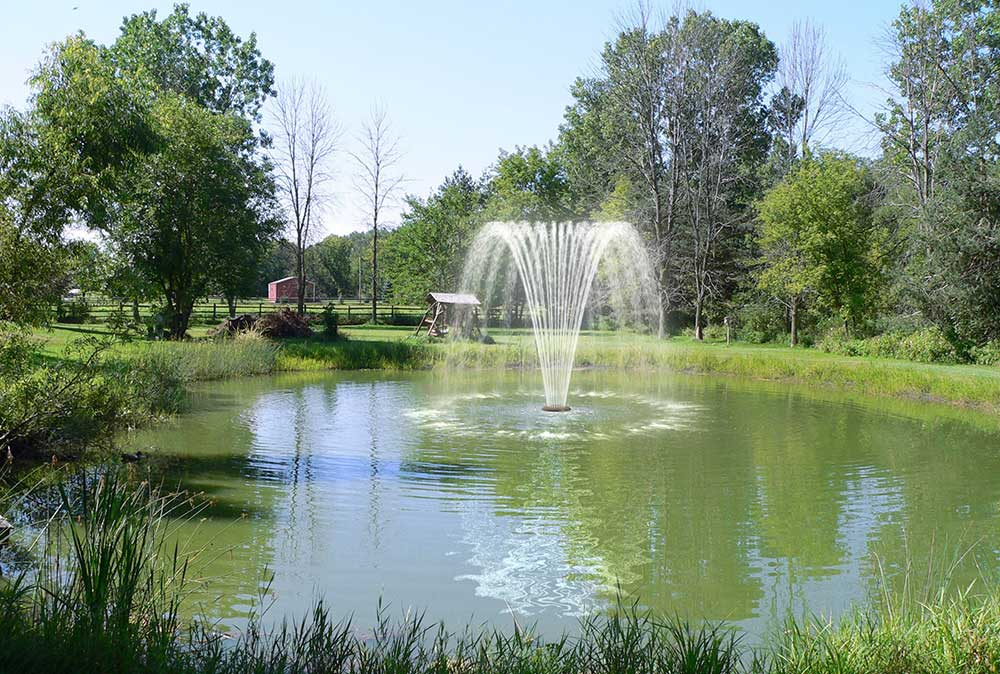Floating Pond Fountain